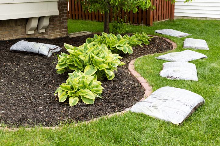 préparer son jardin pour le printemps et semer les premières graines