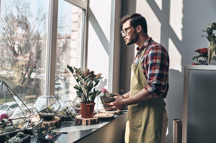 conserver ses plantes d'appartement